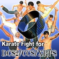 Karate Fight for DCS2/CCS/XRPS